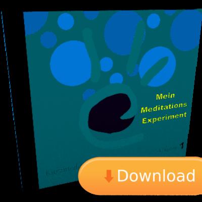 Das Meditations Experiment